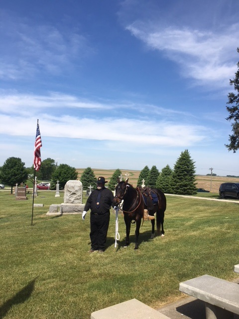Memorial Day image with horse